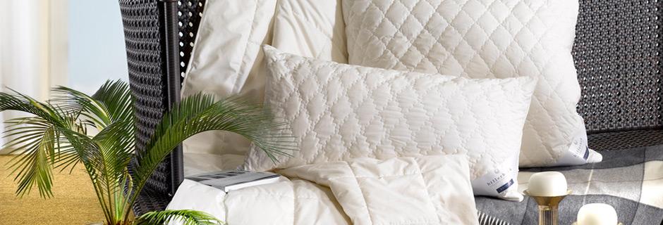 kopfkissen eggers deutsche premiumprodukte. Black Bedroom Furniture Sets. Home Design Ideas